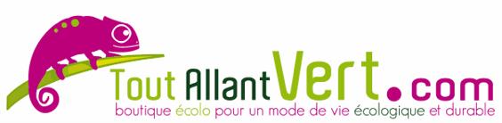 logo toutallantver.com
